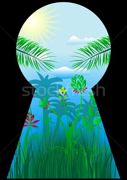 Sleutelgat tropische wereld tropen palmbomen bloemen Stockfoto © saicle