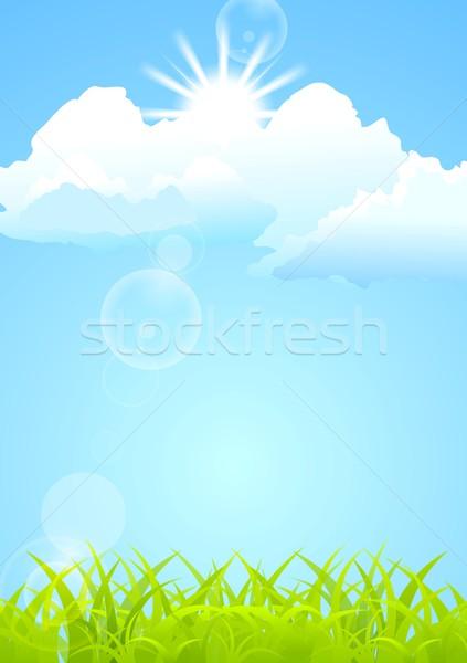 Shiny vector summer background Stock photo © saicle
