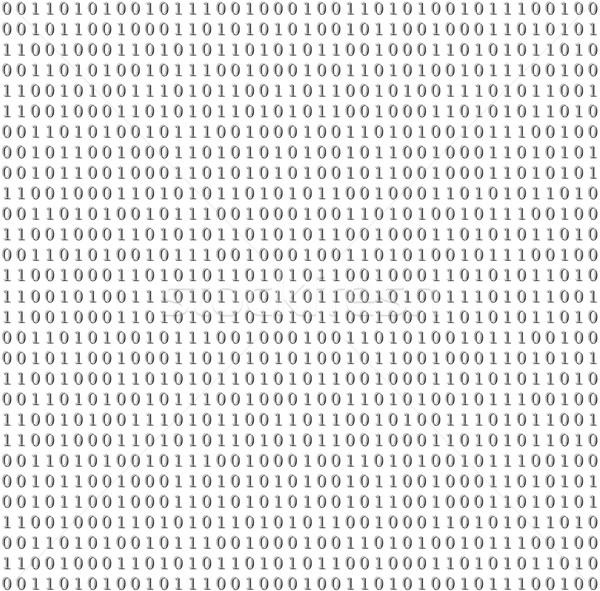 двоичный Код вектора серый аннотация дизайна Сток-фото © saicle