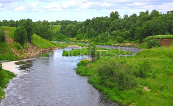 Beautiful river valley Stock photo © saicle