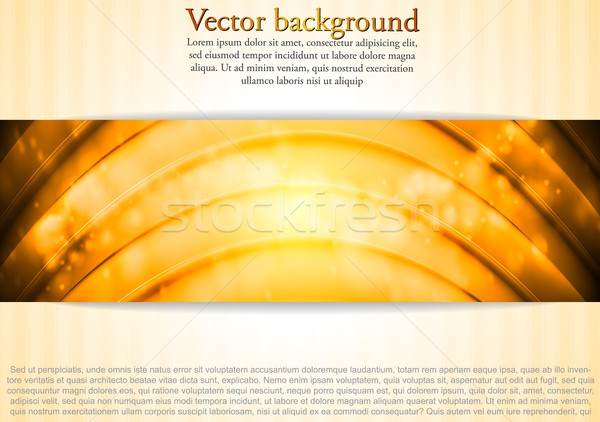 Elegant vector business template Stock photo © saicle