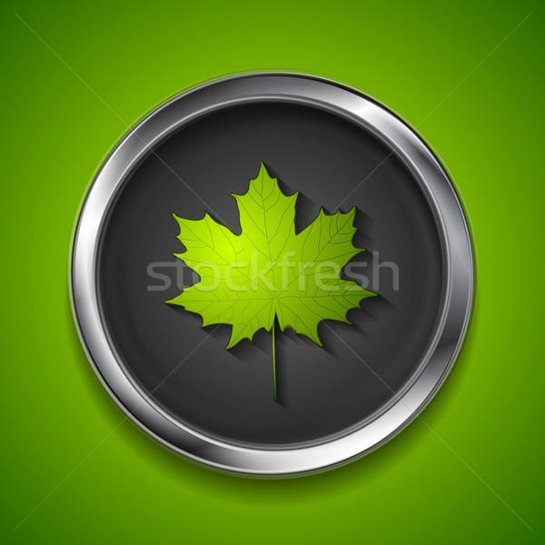 Verde estate foglia d'acero metal pulsante vettore Foto d'archivio © saicle