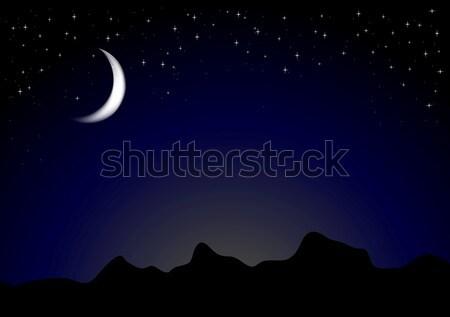 Ciemne światło księżyca noc wektora góry Zdjęcia stock © saicle
