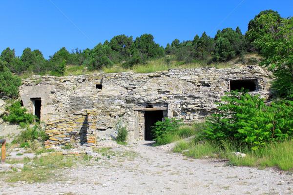 Ancient ruins Stock photo © saicle