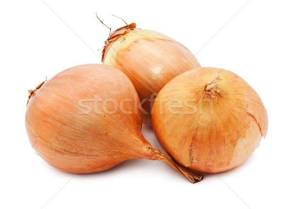 Onion Stock photo © sailorr