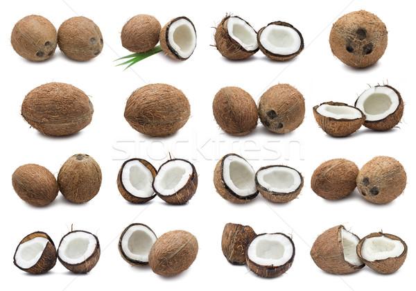 Kokosnoten collectie vers geïsoleerd witte melk Stockfoto © sailorr