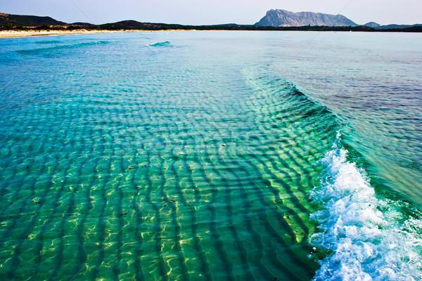 Green wave Stock photo © sailorr