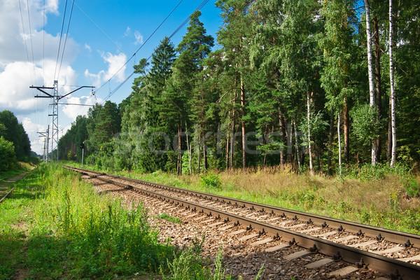 Railroad Stock photo © sailorr