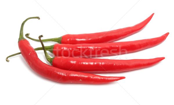 Chili pepper Stock photo © sailorr