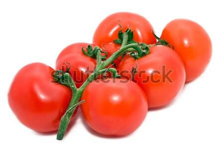 Tomatos Stock photo © sailorr