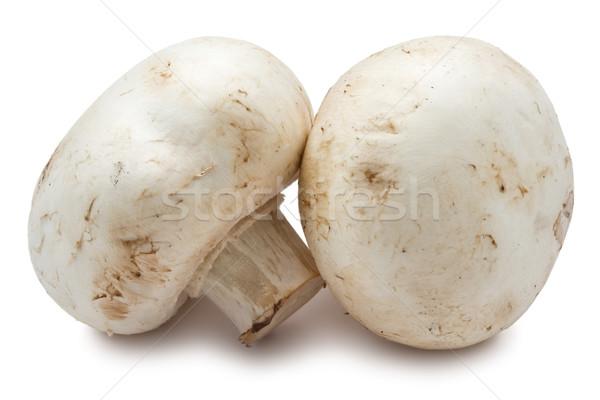 Champignon gombák friss izolált fehér étel Stock fotó © sailorr