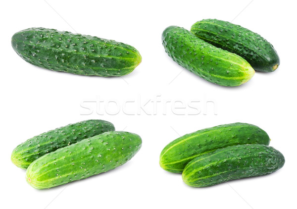 Cetrioli raccolta fresche verde cetriolo isolato Foto d'archivio © sailorr