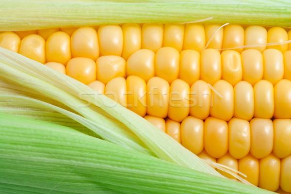 Milho macro foto amarelo saudável saboroso Foto stock © sailorr