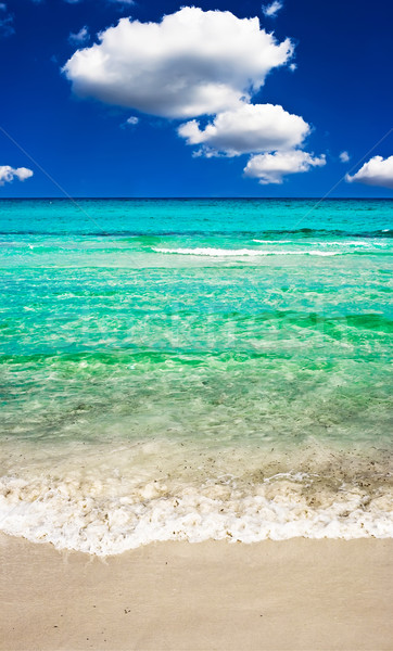 Perfect strand zee zandstrand zomer oceaan Stockfoto © sailorr