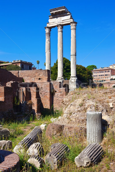 Roman Forum Stock photo © sailorr