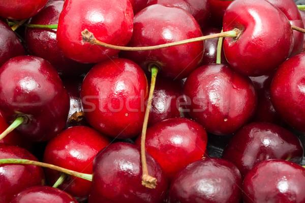 Rosso ciliegio bella fresche macro foto Foto d'archivio © sailorr