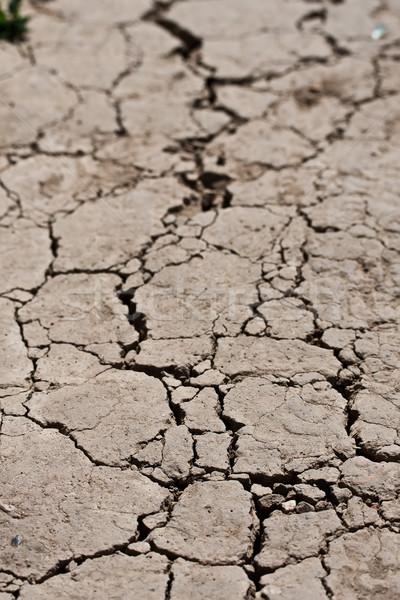 Asciugare terra screpolato terra texture sfondo Foto d'archivio © sailorr