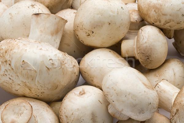 Stock fotó: Champignon · gombák · készít · nyers · étel · minta · háttér