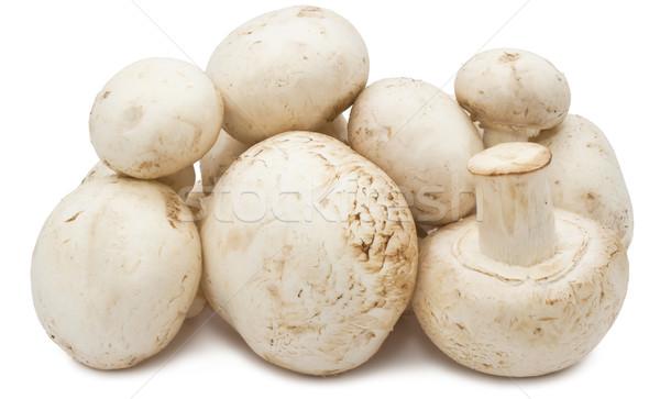 Pieczarka grzyby świeże odizolowany biały żywności Zdjęcia stock © sailorr