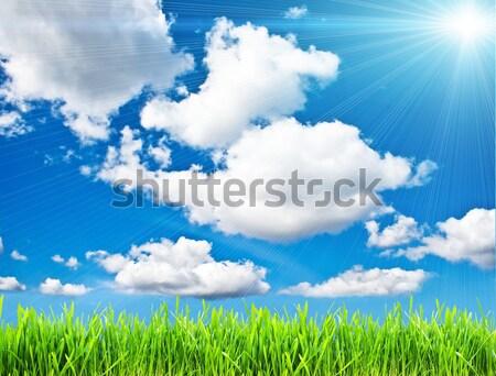 лет свежие зеленая трава Blue Sky небе трава Сток-фото © sailorr