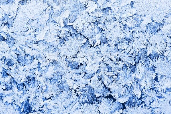 Vorst patroon mooie winter venster licht Stockfoto © sailorr