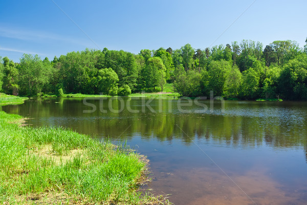 Summer landscape Stock photo © sailorr