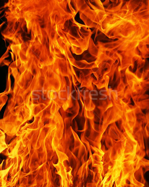 Stock photo: Fire