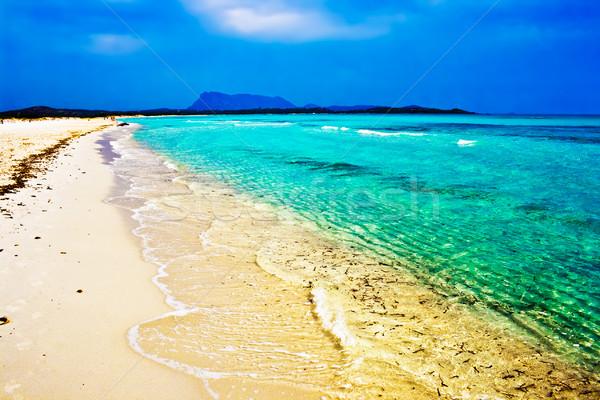 идеальный пляж белый морем лет Сток-фото © sailorr
