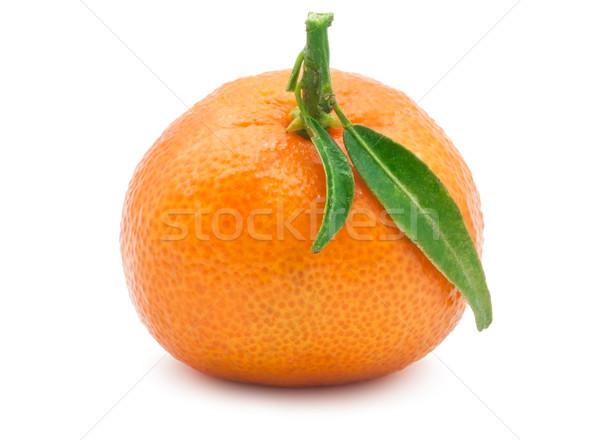 Tangerina suculento mandarim isolado branco comida Foto stock © sailorr