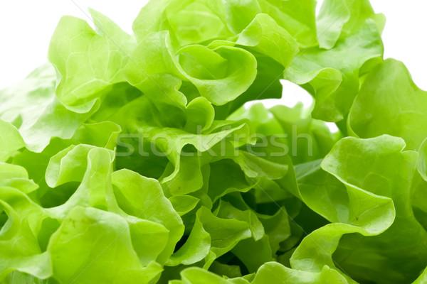 レタス 新鮮な 緑 サラダ 葉 ストックフォト © sailorr