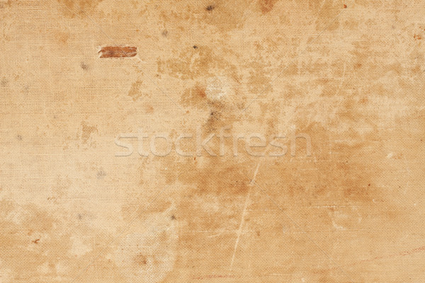 Canvas background Stock photo © sailorr