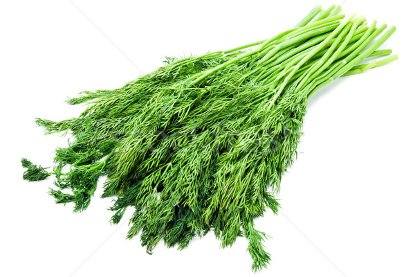 Fresh dill isolated on white background Stock photo © sailorr