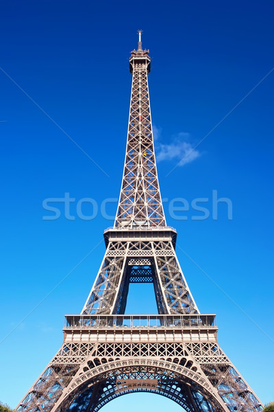 Eiffel Tower in Paris Stock photo © sailorr