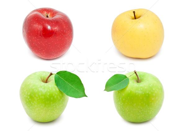 Almák gyűjtemény friss izolált fehér természet Stock fotó © sailorr