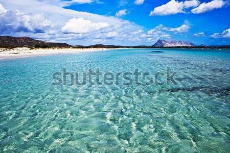 Sardinian Beach Stock photo © sailorr