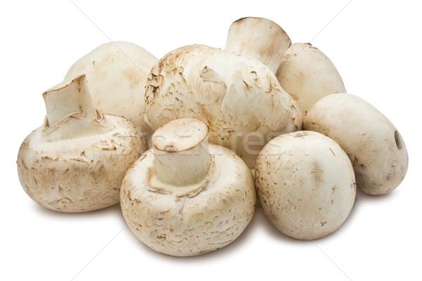 Champiñón setas frescos aislado blanco alimentos Foto stock © sailorr