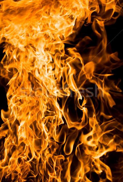 Fire Stock photo © sailorr