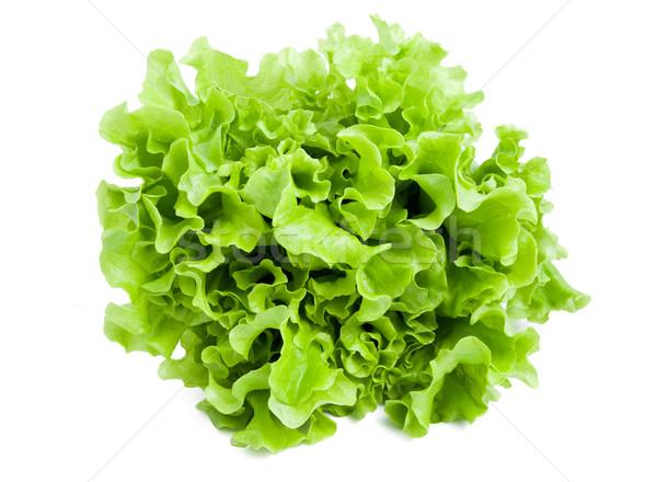 レタス 新鮮な 緑 サラダ 孤立した 白 ストックフォト © sailorr
