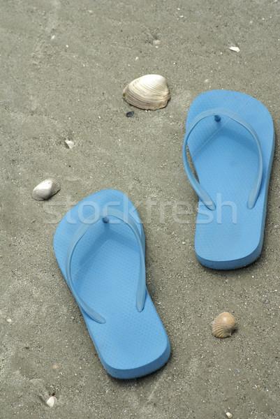 Niebieski plaży mokro piasku podróży Zdjęcia stock © saje