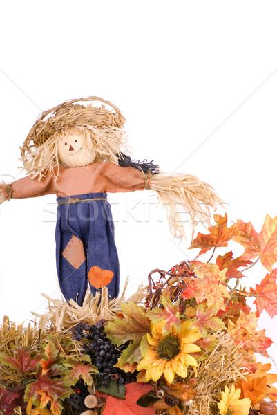 Halloween Vogelscheuche Dekoration weiß Gesicht Hintergrund Stock foto © saje