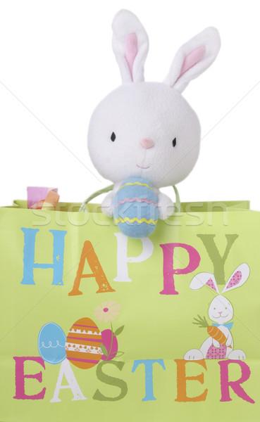 Conejo de Pascua regalo bolsa cute juguete Pascua Foto stock © saje