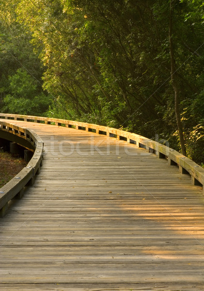 Curved Wooden Path Stock photo © saje