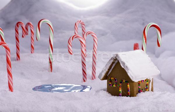 Stok fotoğraf: Noel · şeker · orman · kulübe · gölet