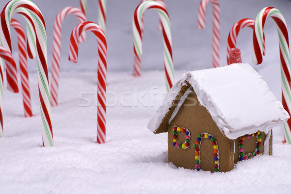 Christmas Ginger Bread Cottage in Candy Cane Forest Stock photo © saje