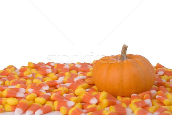 Kürbis candy Mais wenig Stock foto © saje
