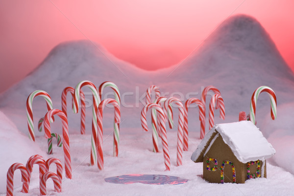 Christmas Candy Cane Forest Pink Sunset Pond Stock photo © saje
