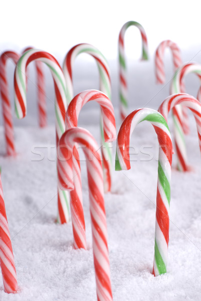 Christmas Candy Canes in the snow portrait Stock photo © saje