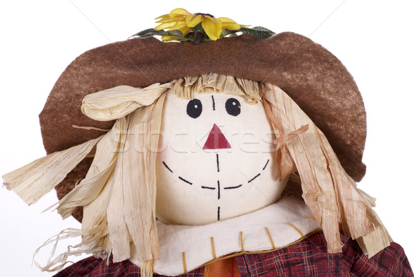 Halloween Scarecrow Decoration Closeup Stock photo © saje