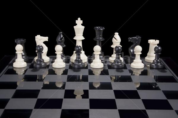 Chess Diversity White King Stock photo © saje