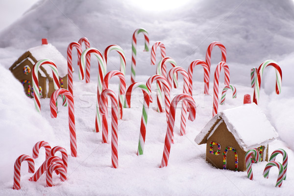 Christmas Ginger Bread Cottages in Candy Cane Forest Stock photo © saje